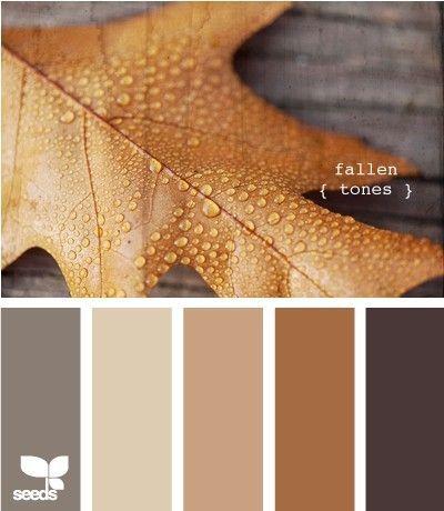 Farbpalette des Herbstes