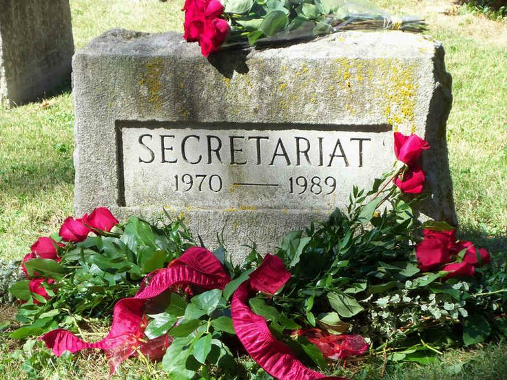 Secretariat's burial place at Claiborne Farm. one of the regrets of my life--I never got to see him.