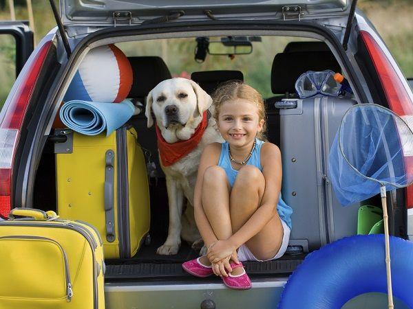 ¿Como evitar el mareo de tu mascota en los viajes? Aquí te daremos dos tips donde podrás disfrutar de tus vacaciones junto a toda tu familia.