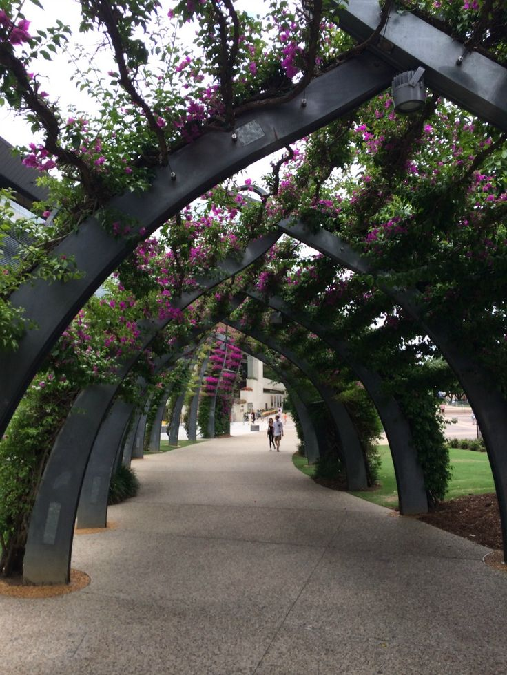 5 Reasons to Visit South Bank in Brisbane