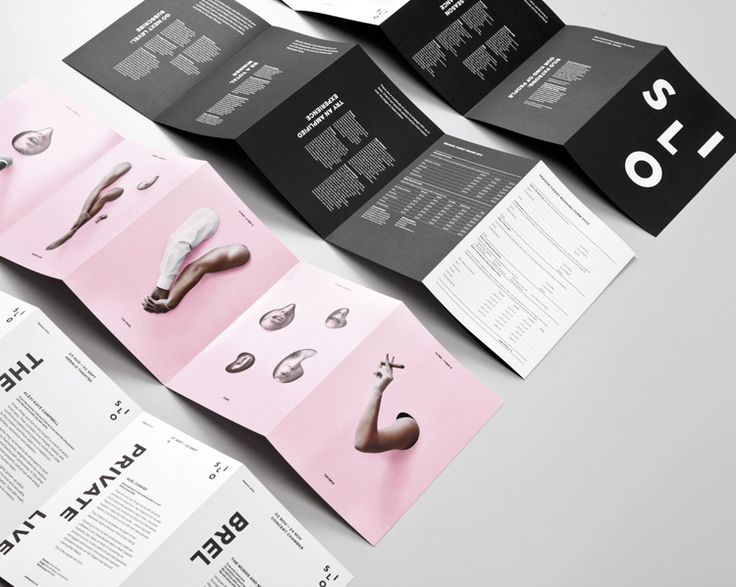 award winning brochure design - 660 best images about flyer on pinterest behance