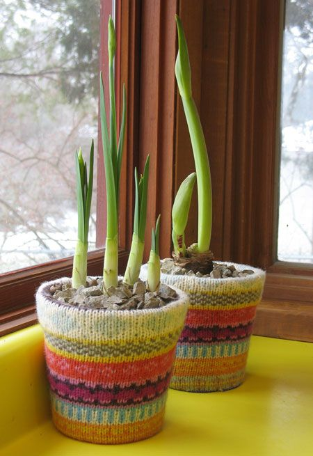 cute! flower pot covers made from sweater sleeves.