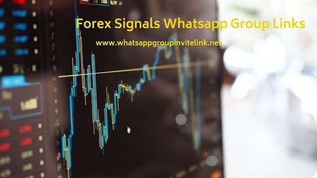 Forex Signals Whatsapp Group Links Forex Signals Whatsapp Group