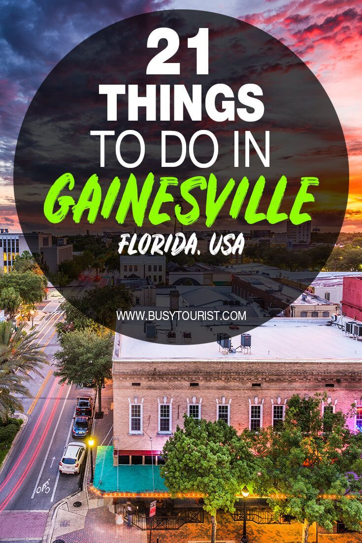 21 Fun Things To Do In Gainesville Florida Florida Travel Travel Usa Us Travel Destinations