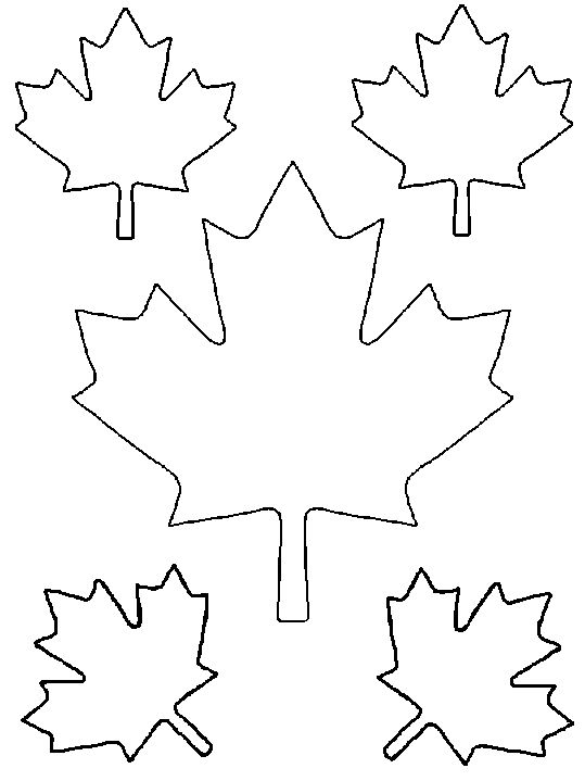 Maple leaf pattern. Might come in handy.