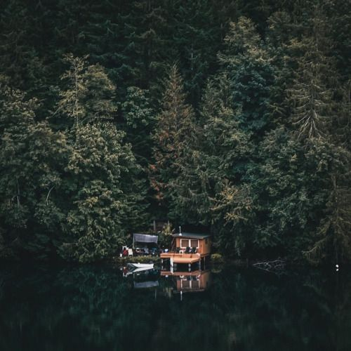 Cabin In The Woods Secluded Paradise