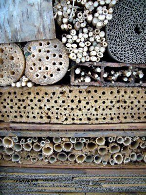 A beautiful Bug hotel to help beneficial insects and pollinators.