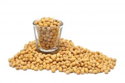 What effects could soy products have on you?: Soybean Oil Soybeanoil, Hair Moisturizer, Long Hair, Soy Products, Sweet Roads