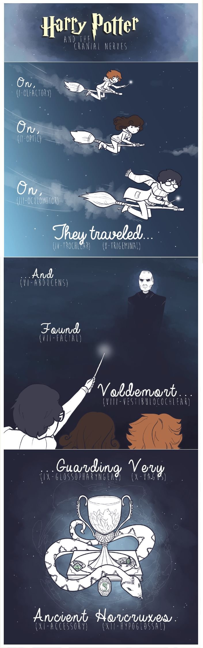 This is the illustrated Harry Potter-themed cranial nerve mnemonic I really could have used as an M1    Source: http://bioljerk.tumblr.com/post/70761780649/hello-there-no-im-not-dead-sorry-for-not