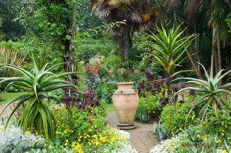 Abbotsbury Sub Tropical Gardens . Dorset, England.