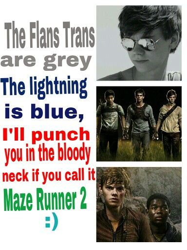 the maze runner poetry Basically just a bunch of poetry i have written about the maze runner series most  of the poems are horrible.