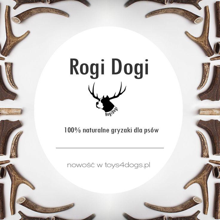 Nowość w Toys4dogs.pl RogiDogi - owoce lasu ;-) wyjątkowy i 100% naturalny gryzak z poroża jelenia dla psa #rogidogi #toys4dogs #zabawkadlapsa #gryzakdlapsa