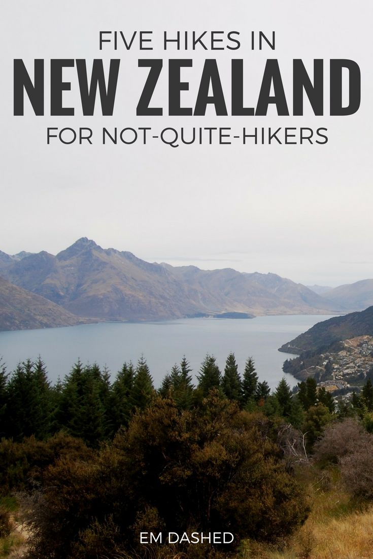 Have limited hiking experience and wondering if a trip to New Zealand is really worth it? Here are five stunning hikes in NZ that are perfect for those who don't hike often but still want to enjoy this country's amazing natural beauty. Featuring walks in Kaikoura, Queenstown, Taupo, and more.