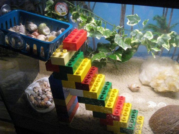 Hermit crabs like playing with Legos too! Build them something to climb! - PetDIYs.com