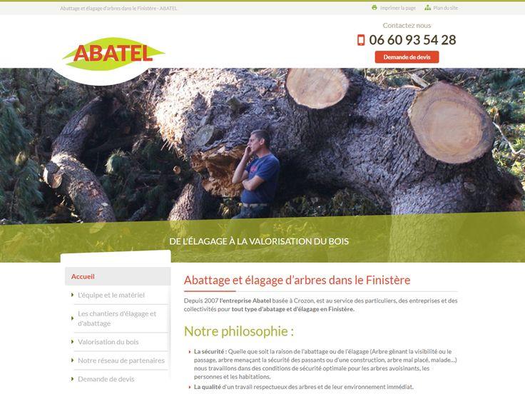 Abattage et élagage d'arbres dans le Finistère - ABATEL
