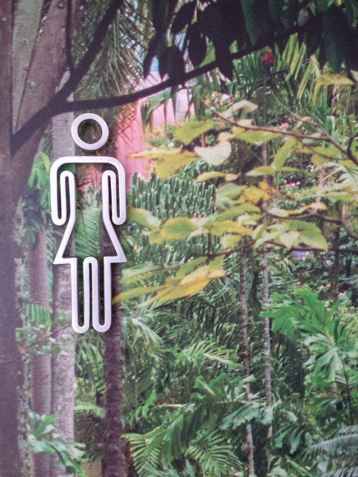 Jardin botanico en medellin colombia restaurante insitu for Restaurante jardin botanico