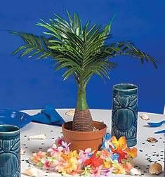 Our Mini Palm Tree Centerpiece makes a fabulous table decoration for your tropical themed event. The Palm Tree Centerpiece measures 17 inches high.
