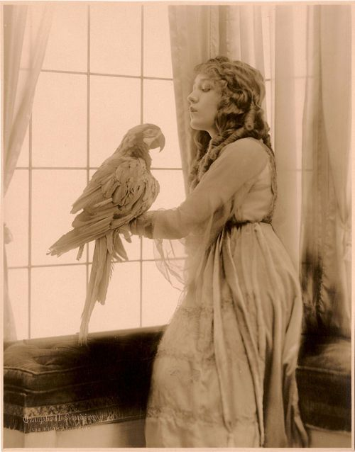 Hoodoothatvoodoo Mary Pickford 1910s Retro Photo