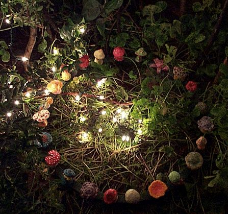 A fairy ring...that transports Rose to her true love
