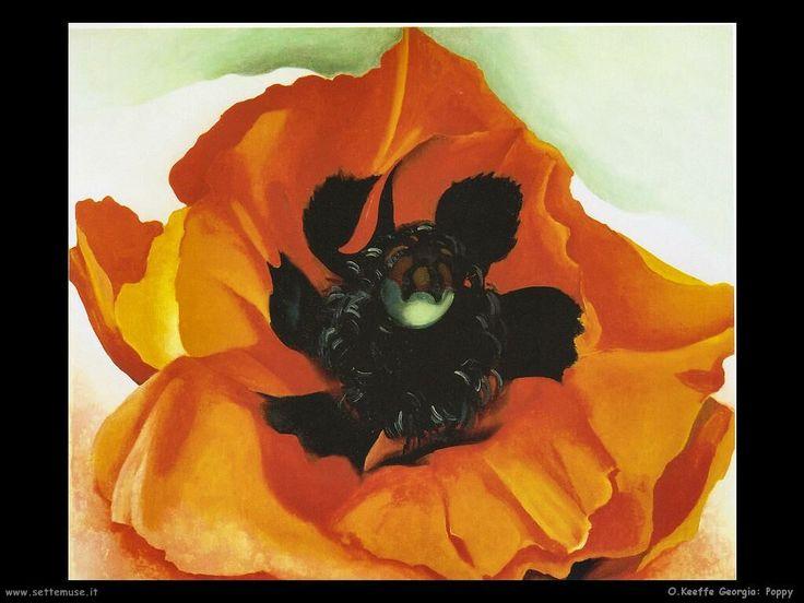 o_keeffe_georgia_012_poppy.jpg 1.024×768 pixel
