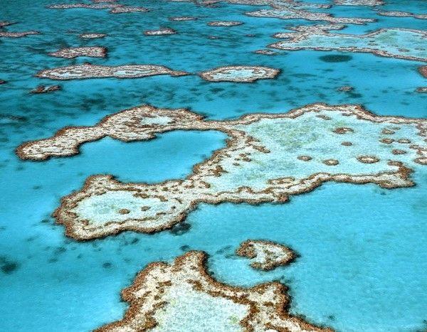 86 - Bucear en el arrecife de coral más grande del mundo es como aterrizar en otro planeta. Es el hogar de unas 30 especies de ballenas, delfines y marsopas e innumerables peces. También se pueden ver caballitos de mar, tiburones, rayas y cocodrilos de agua salada. Si te gusta nadar, hacer snorkel o bucear - la belleza de esta maravilla impulsará tus aletas.