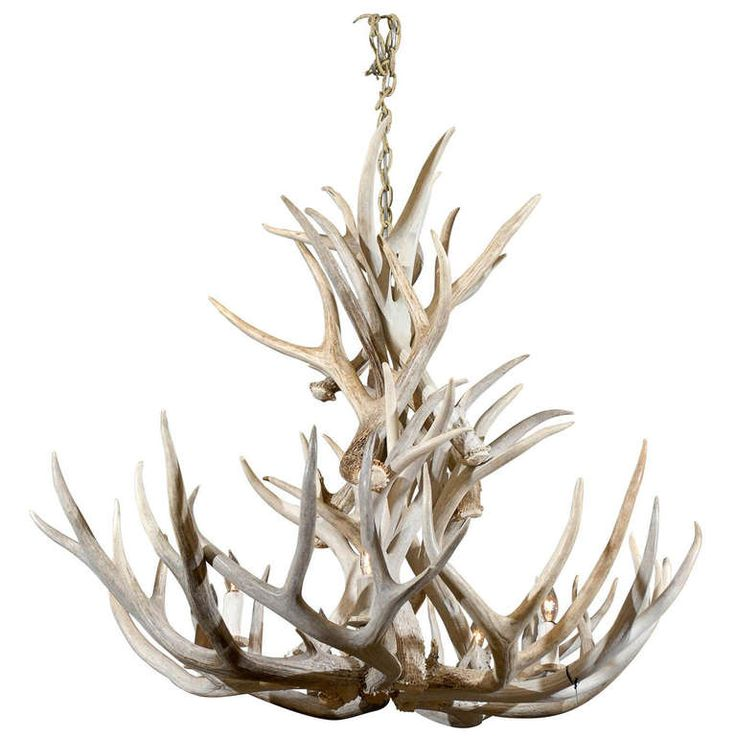 12 best how to fit the fantastic antler chandelier into various room very nice antique antler chandelier aloadofball Images