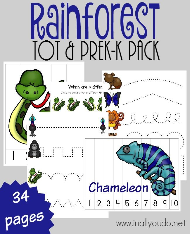 Little ones will LOVE this fun-filled puzzle & activity pack all about the Rainforest Animals. 34 total pages :: www.inallyoudo.net