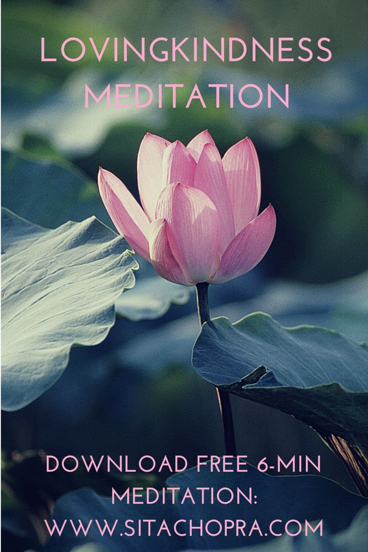 Loving Kindness Quotes 25 Best Lovingkindness Images On Pinterest  Buddhism Flower And