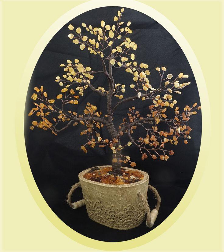 МНОГО... Янтарное дерево
