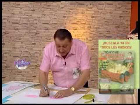 Hermenegildo Zampar - Bienvenidas TV - Explica las mangas y cuello de un...