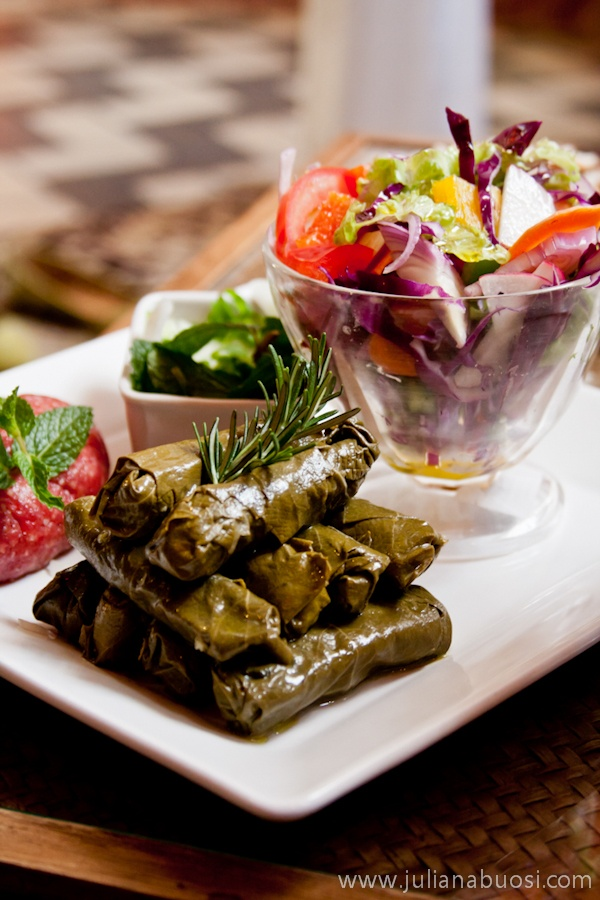 Charutos e salada arabe / Arabian food