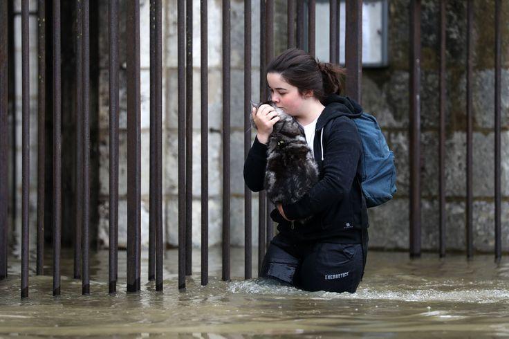 Écoles fermées, routes coupées, quartiers évacués... retour sur une semaine d'inondations historiques en 10 photos choisies.