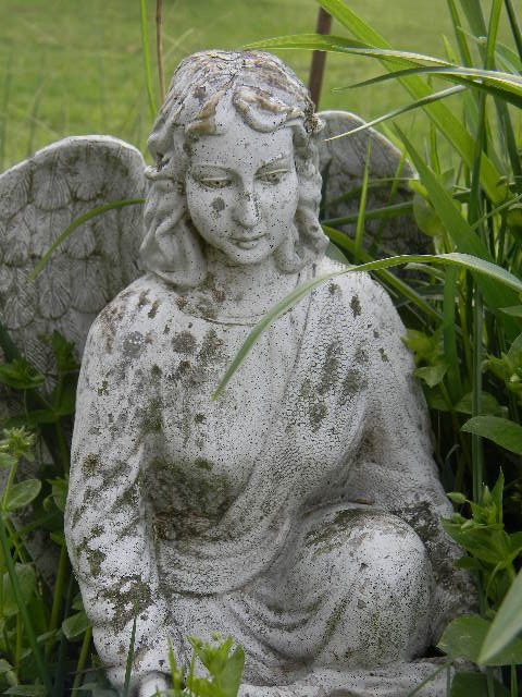My Little Garden Angel ~ She Feeds The Birds For Us Here At Notforgotten  Farm
