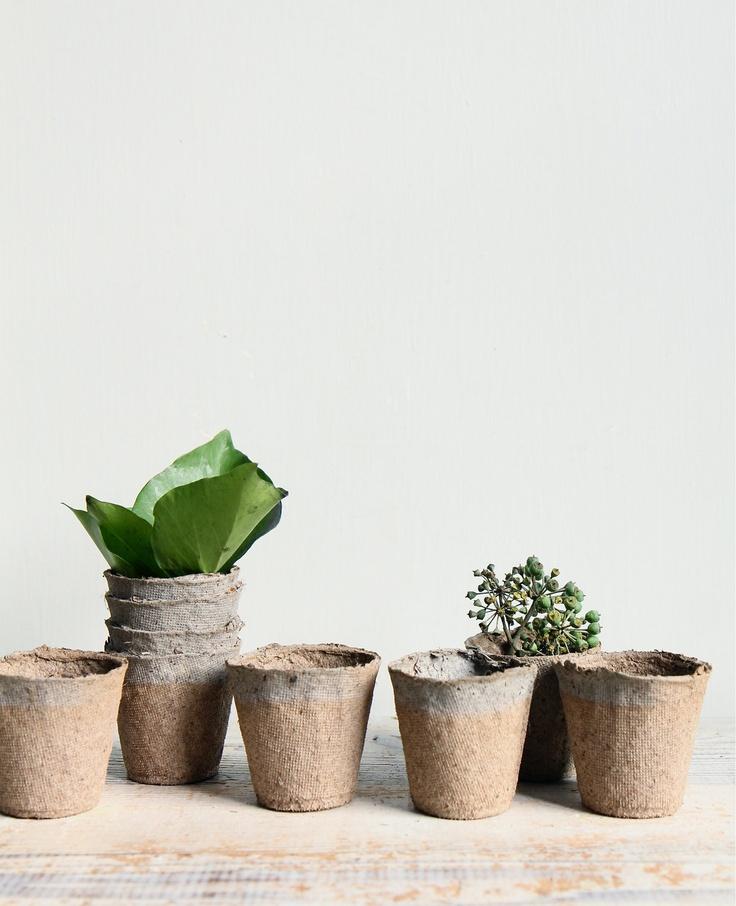 Vintage Peat Planting Pots / Seed Starter, Vase, Paper.  via Etsy.
