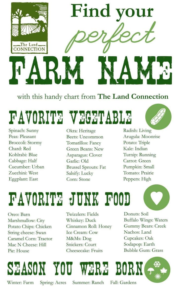 best 25 farm name ideas on pinterest