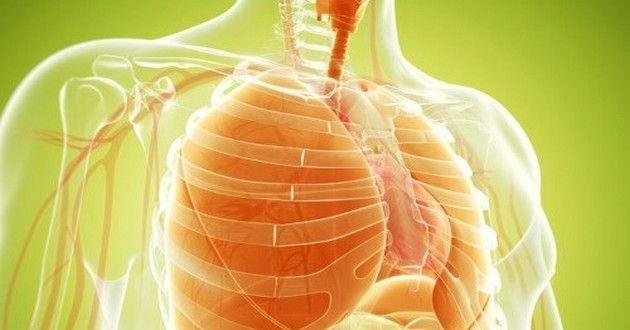 Cigarette: voici quelques conseils pour nettoyer vos poumons