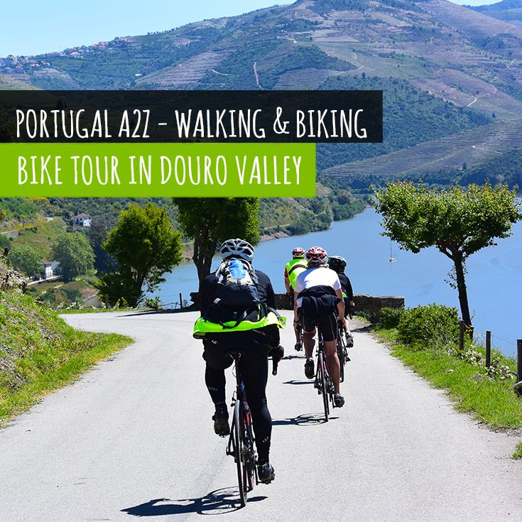 Just 1 hour from Porto, Douro Valley is one of the things you don't want to miss out.