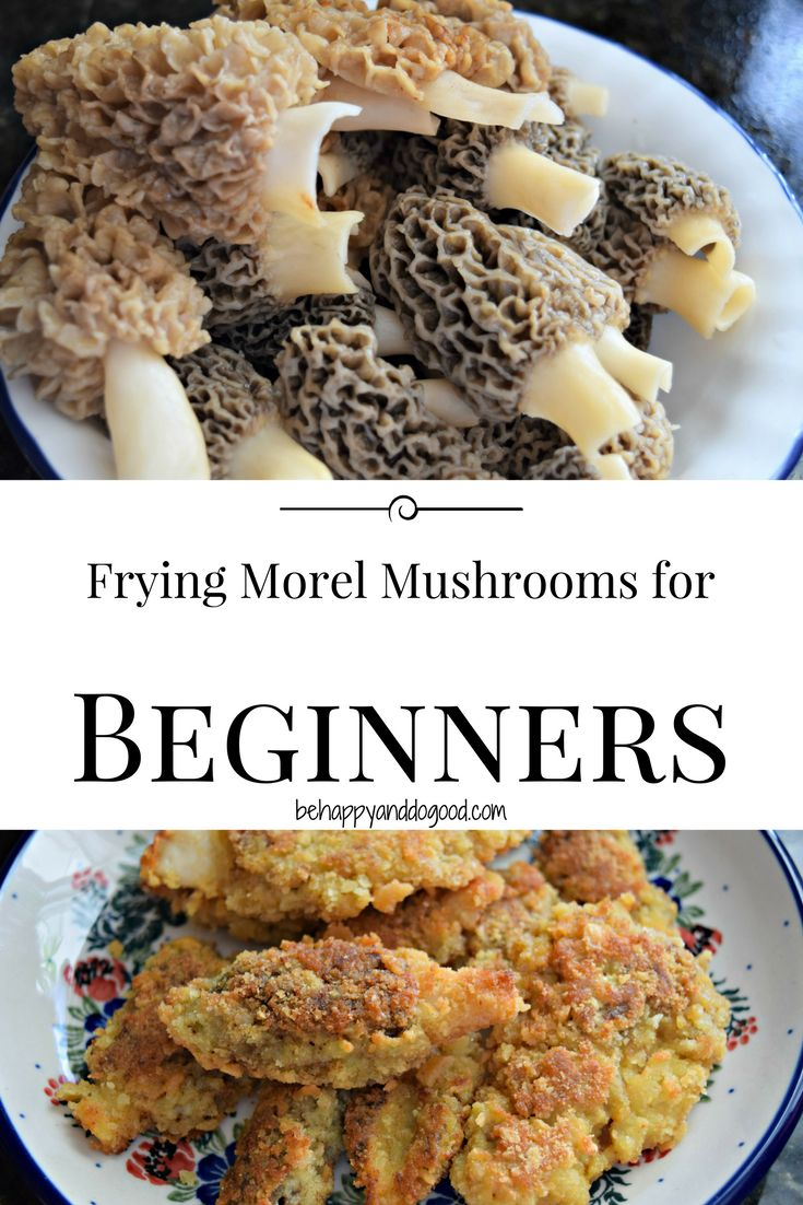 If you've never tried morel mushrooms, this is the absolute best recipe! Perfect for beginners.