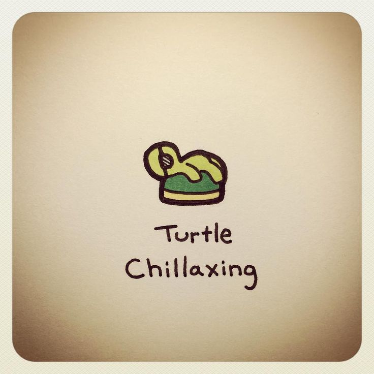 Turtle Chillaxing                                                                                                                                                                                 More
