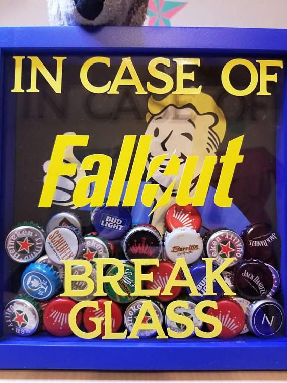 Fallout four emergency provisions box