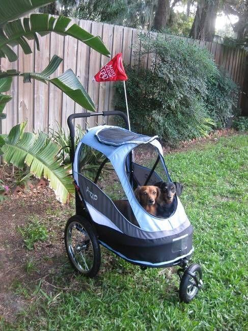 PetZip Happy Trailer Dog Jogging Stroller - Blue Big Dog l Doggie Diva