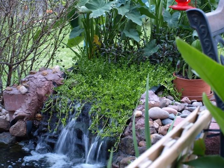 97 best pond bog filter ideas and designs images on for Fish pond filter design
