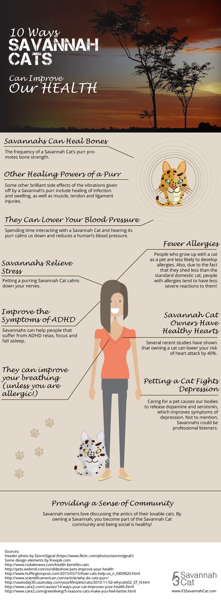 Health Benefits of owning a Savannah Cat | F3 Savannah Cat (@f3savannahcat) | Twitter