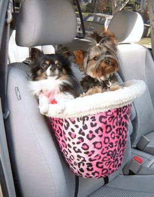 Small Dog Car Seat. My Peak would love this