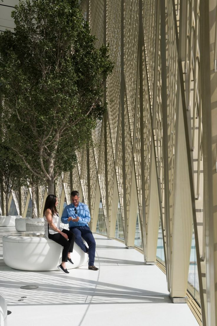 Like the Apple Stores Foster + Partners has previously designed in London and San Francisco, the Dubai shop features a series of cylindrical planters with full-sized trees.