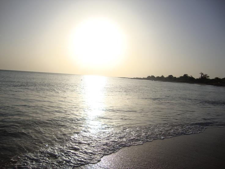Rencontres senegalaises