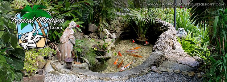 Koi pond - Beautiful small resort with private house for sale in the Philippines