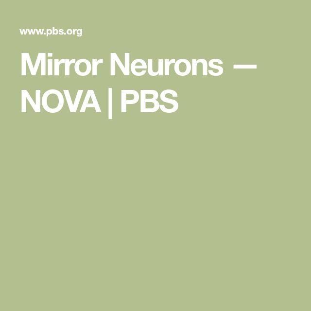Mirror Neurons — NOVA | PBS