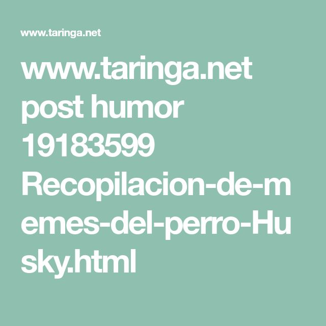 www.taringa.net post humor 19183599 Recopilacion-de-memes-del-perro-Husky.html