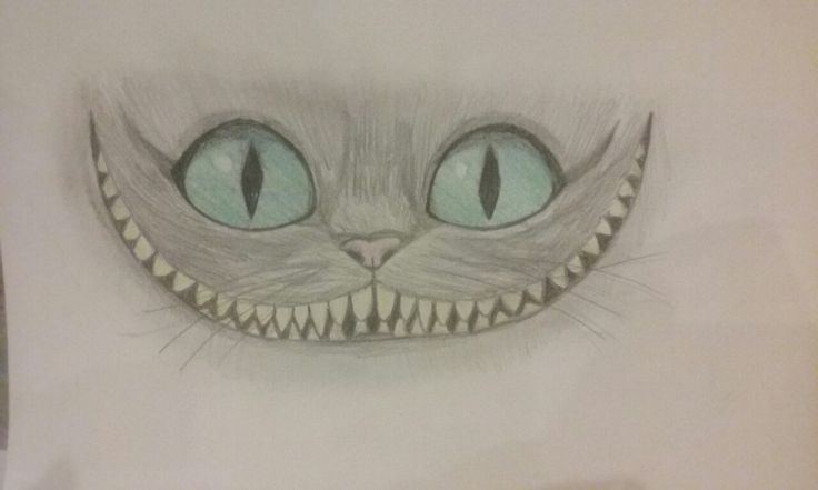 Mad cat:D my drawing